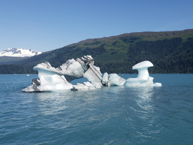 Floating Alaska Glaciers