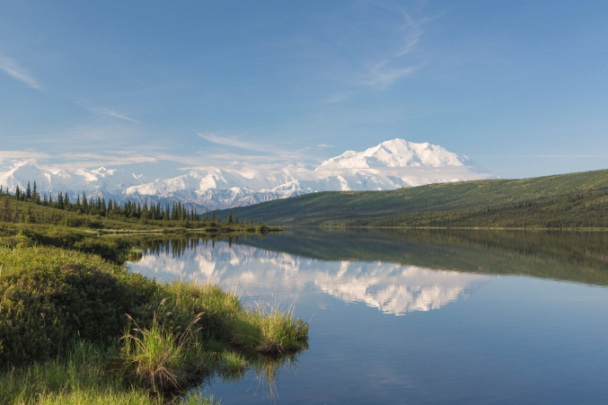 Photo Tours In Denali National Park
