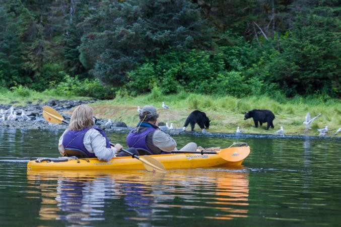 Kayaking And Black Bears