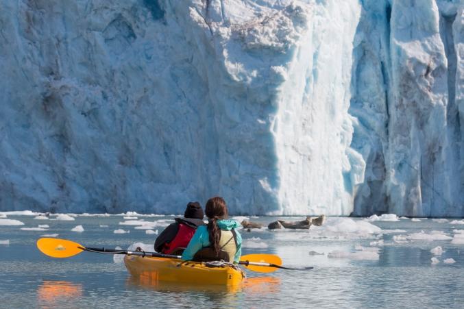 Day Kayaking Tours In Alaska