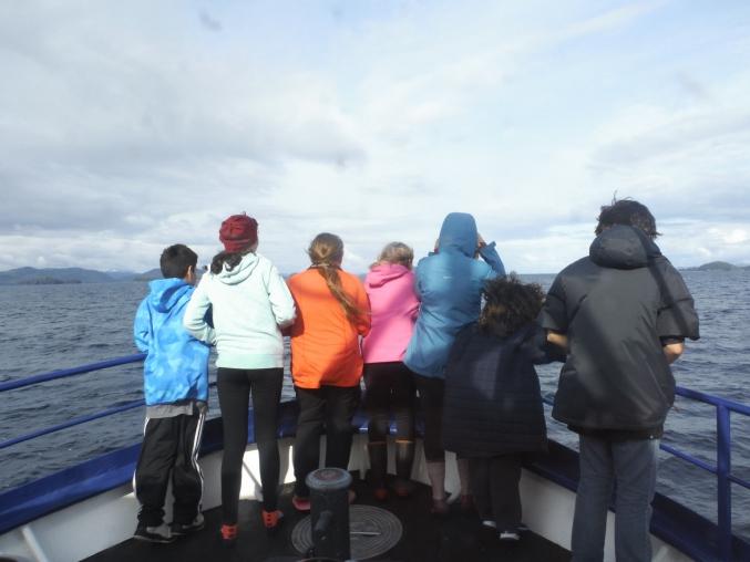 Alaska Family Wildlife Vacations